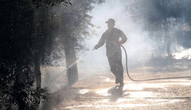 Πυροσβέστης επιχειρεί σε δασική πυρκαγιά