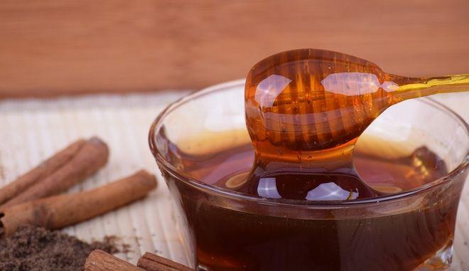 Φεστιβάλ Ελληνικού Μελιού και Προϊόντων Μέλισσας