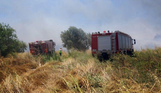 Πυρκαγιά στην περιοχή του Λαδικού Ρόδου την Πέμπτη 29 Ιουνίου 2017. Η πυρκαγιά ξεκίνησε από αποθήκη μεταφορικής εταιρείας και πήρε πολύ γρήγορα μεγάλη διάσταση. (EUROKINISSI/RODOSPRESS.GR/ΑΡΓΥΡΗΣ ΜΑΝΤΙΚΟΣ)