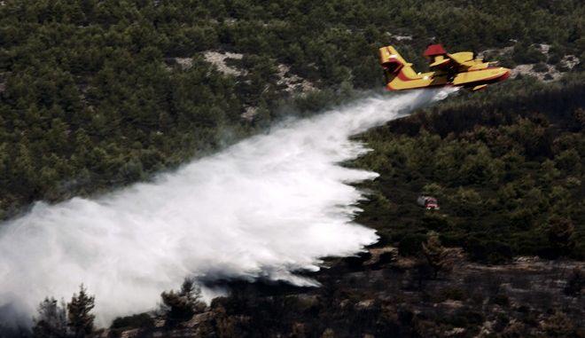 Πυρετώδεις προετοιμασίες για την αντιμετώπιση των πυρκαγιών