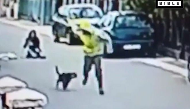 Βίντεο: Αδέσποτος σκύλος σώζει γυναίκα από θρασύτατο ληστή