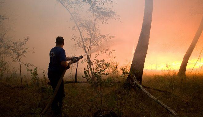 Εικόνα από φωτιά σε δασική έκταση στη Ρωσία - Φωτό αρχείου