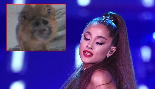 H Ariana Grande κυκλοφόρησε το βίντεο κλιπ του νέου της single με τίτλο Breathin'