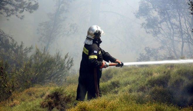 Πυροσβέστης επιχειρεί σε φωτιά σε δασική έκταση