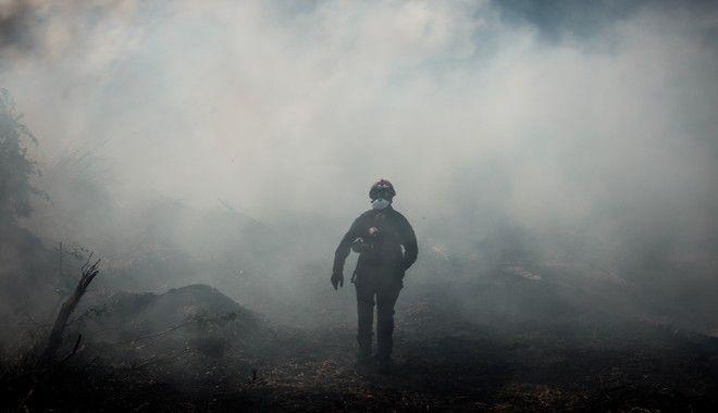 Για 2η ημέρα οι πυροσβεστικές δυνάμεις συνεχίζουν την μάχη για την κατάσβεση της μεγάλης πυρκαγιάς στην Εύβοια. Αναζωπύρωση κοντά στο χωρίο Μακρυμάλλη, Τετάρτη 14 Αυγούστου 2019.