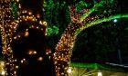 Χριστουγεννιάτικοι στολισμοί στη Νέα Σμύρνη
