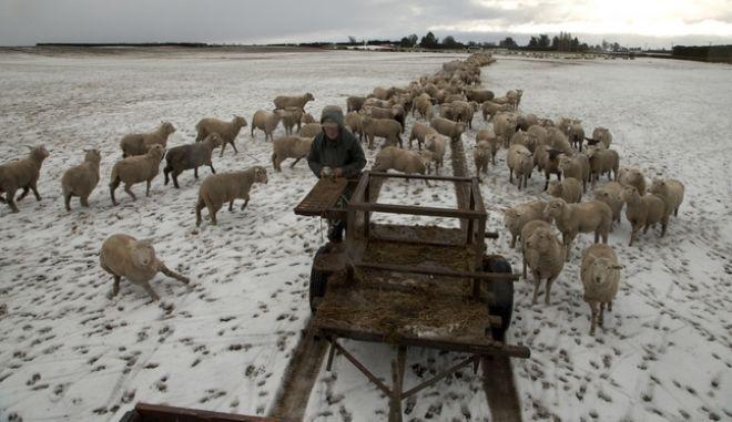 Τυφώνας και χιόνια στη Νέα Ζηλανδία