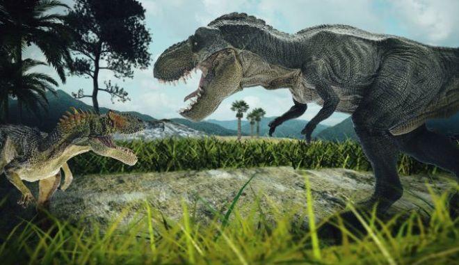 Οι Τυραννόσαυροι πιθανόν κυνηγούσαν σε αγέλες