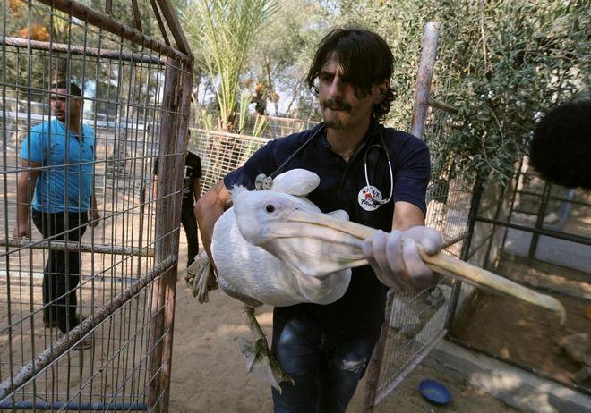 Έκλεισε ο χειρότερος ζωολογικός κήπος του κόσμου