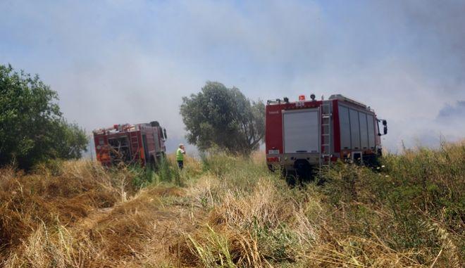 Πολύ υψηλός κίνδυνος πυρκαγιάς τη Δευτέρα