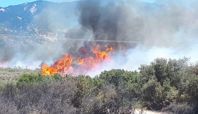 Μάχη με τις φλόγες σε Κεφαλονιά και Ηλεία