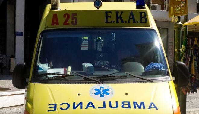 Λαμία: Στο νοσοκομείο δύο άτομα από δάγκωμα οχιάς