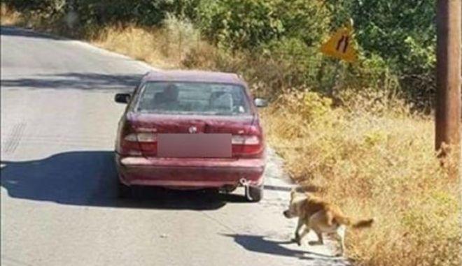 Κρήτη: Συνέλαβαν τον οδηγό που είχε δέσει στο αυτοκίνητό του σκύλο