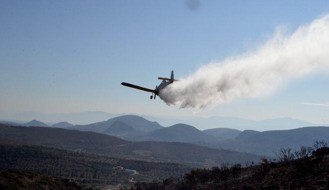 Αεροσκάφος PZL