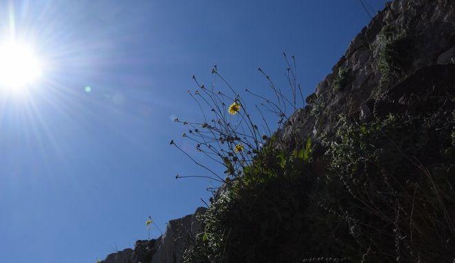Ηλιοφάνεια στην Αργολίδα