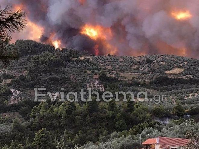 Βιβλική καταστροφή στη Λίμνη Εύβοιας: Εκτός ελέγχου η φωτιά - Στάχτη χιλιάδες στρέμματα