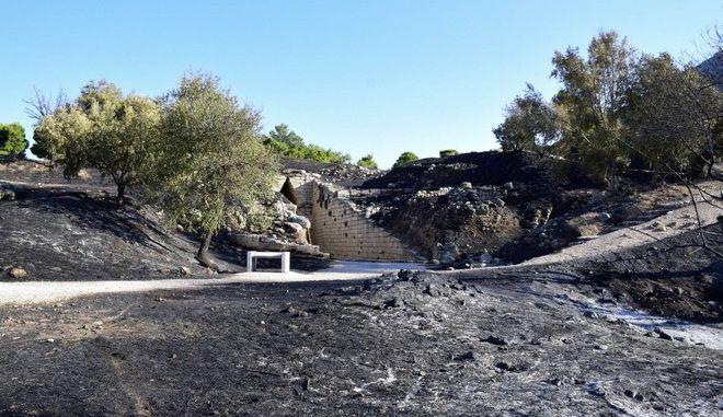 Φωτιά στον αρχαιολογικό χώρο των Μυκηνών