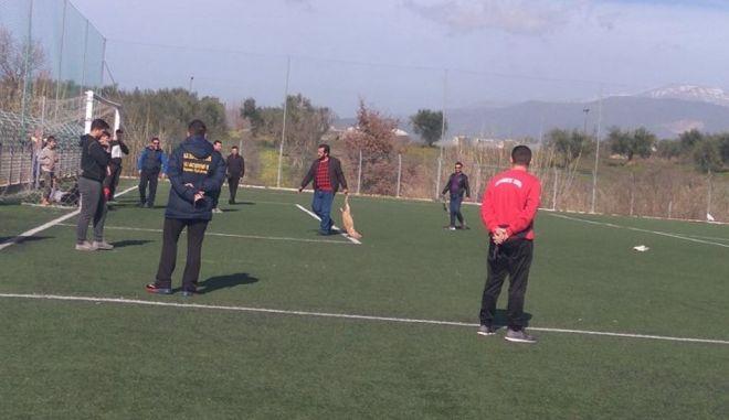 Αχαΐα: Πυροβόλησαν και σκότωσαν σκυλιά σε γήπεδο ποδοσφαίρου
