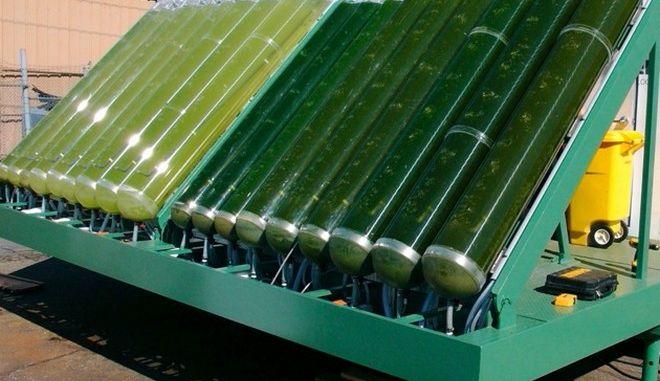 Τα πρώτα 'γλυκά' αεροπορικά βιοκαύσιμα από ζαχαρoκάλαμα