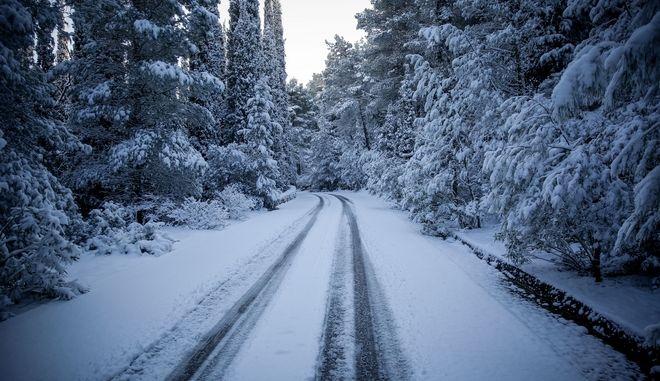 Χιονόπτωση στην περιοχή της Καισαριανής και του Υμηττού την Τρίτη 8 Ιανουαρίου 2019. (EUROKINISSI/ΣΤΕΛΙΟΣ ΜΣΙΝΑΣ)
