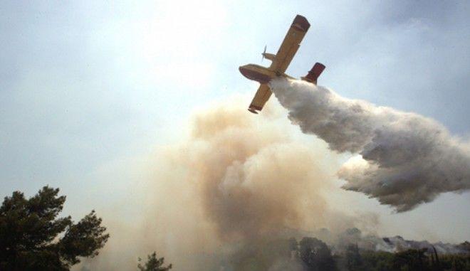 Χαλκιδική: Μεγάλη φωτιά στη Σιθωνία