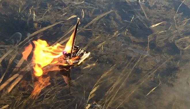 Μια 'Βίκινγκ Κηδεία' για το αγαπημένο του ψάρι