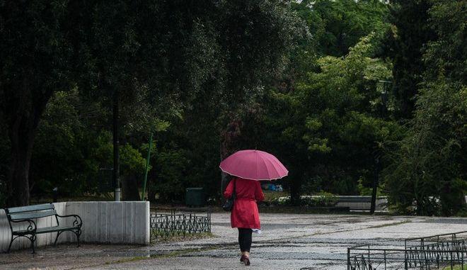 Καλοκαιρινή βροχή - Φωτογραφία αρχείου