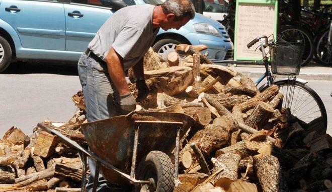 Εργάτες κουβαλούν καυσόξυλα σε κεντρικό δρόμο (οδός Ομήρου) της πόλης των Τρικάλων. (EUROKINISSI/ΘΑΝΑΣΗΣ ΚΑΛΛΙΑΡΑΣ)