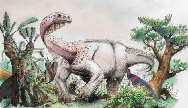 Αγνωστη μαζική εξαφάνιση ειδών στη Γη πριν 233 από εκατ. χρόνια