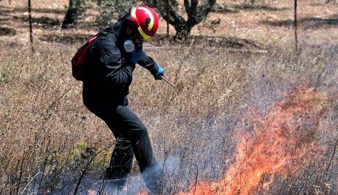 Πυρκαγιά σε δασική έκταση και έκταση με χαμηλή βλάστηση, στην περιοχή Περαχώρας Λουτρακίου Κορινθίας