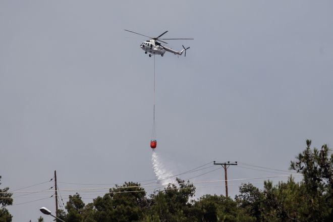 Φωτιά στο Σέιχ Σου: Οριοθετήθηκε το μέτωπο, κάηκαν 90 στρέμματα δάσους - Έρευνα για εμπρησμό