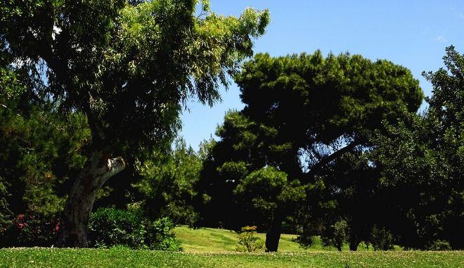 Πάρκο Ελευθερίας (ΦΩΤΟ Αρχείου)