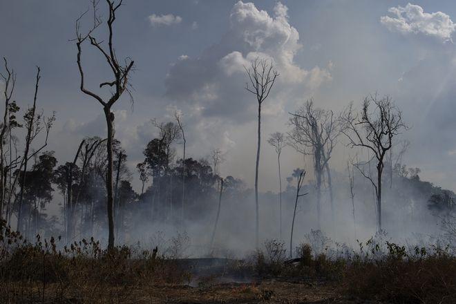 Καίγεται ο Αμαζόνιος