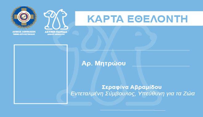 Εθελοντισμός για τα αδέσποτα με πλήρη οργάνωση και εκπαίδευση από τον Δήμο Αθηναίων