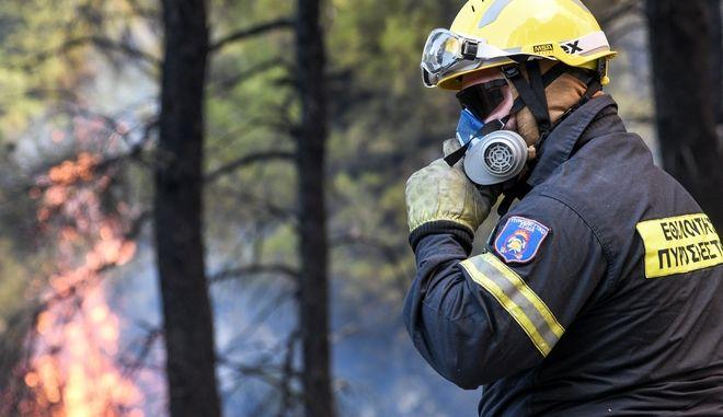 Πυροσβέστης επιχειρεί σε φωτιά (φωτογραφία αρχείου)