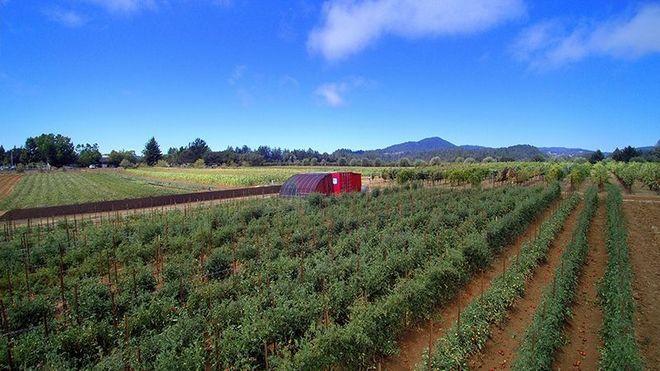 Ένα αγρόκτημα του… κουτιού