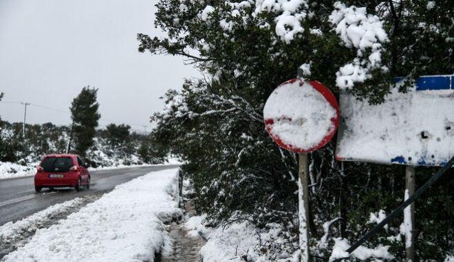 Χιονόπτωση στην Αγία Σωτήρα Μάνδρας