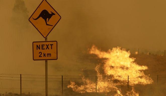 Απο τις φωτιές στην Αυστραλία.