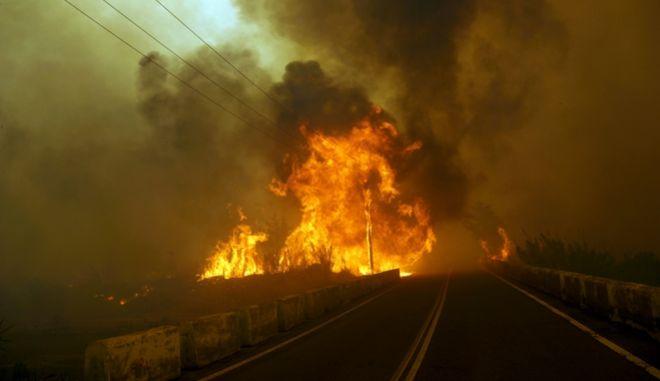 Πυρκαγιά στην κοινότητα Απολακκιάς της Ρόδου το Σάββατο 18 Ιουνίου 2016. (EUROKINISSI/RODOSPRESS.GR/ΑΡΓΥΡΗΣ ΜΑΝΤΙΚΟΣ)