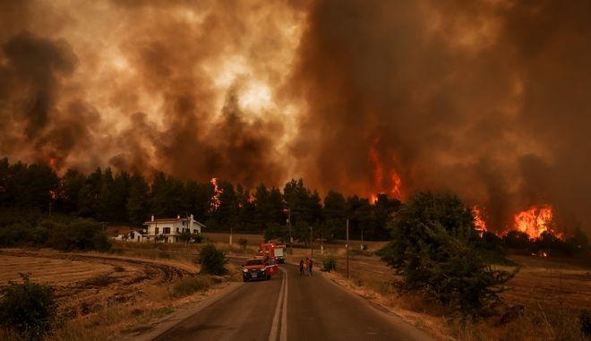Καρέ από τη φωτιά στη Βόρεια Εύβοια