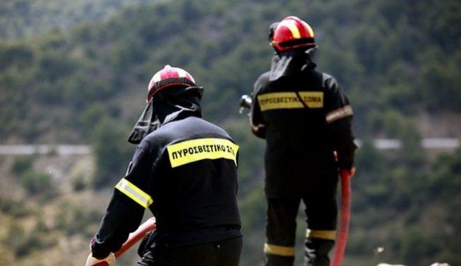 Πυροσβέστες κατά τη διάρκεια κατάσβεσης δασικής πυρκαγιάς, Αρχείο