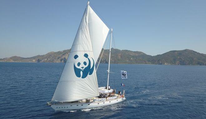 """Το ιστιοπλοϊκό σκάφος του WWF """"Blue Panda"""""""