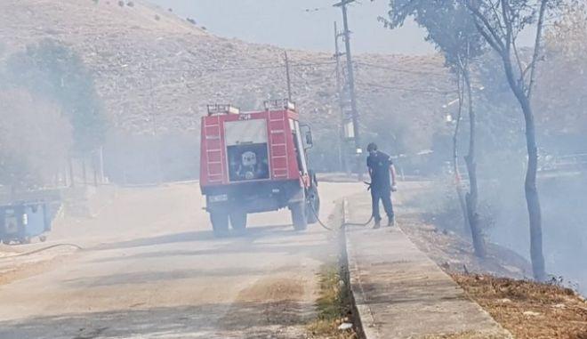 Τραγωδία στα Τρίκαλα: Νεκρός ηλικιωμένος σε ελαιώνα που πήρε φωτιά