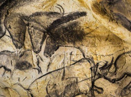 Σοβέ σπηλιά άνθρακα ραντεβού