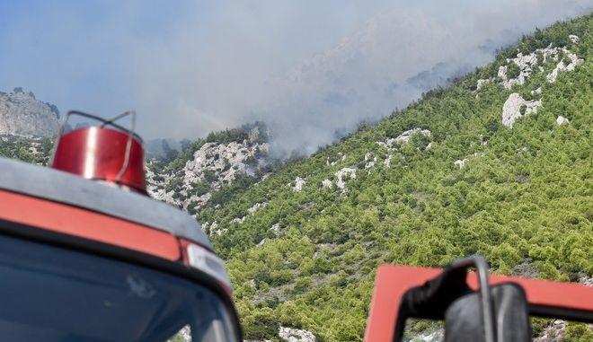 Πυροσβεστικές δυνάμεις σε φωτιά - Φωτό αρχείου