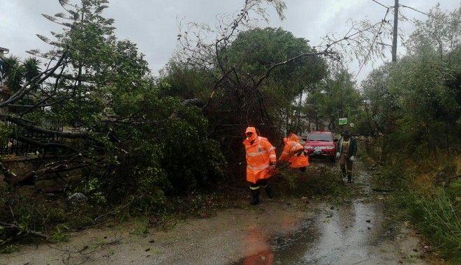 Ιανός: Η χώρα στη δίνη του κυκλώνα: Νεκρή στα Φάρσαλα - Εγκλωβισμένη οικογένεια στους Σοφάδες