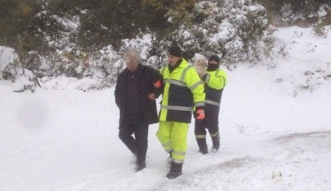 Σκόπελος: Καρέ καρέ η διάσωση άνδρα και του σκύλου του. Βίντεο από το νησί