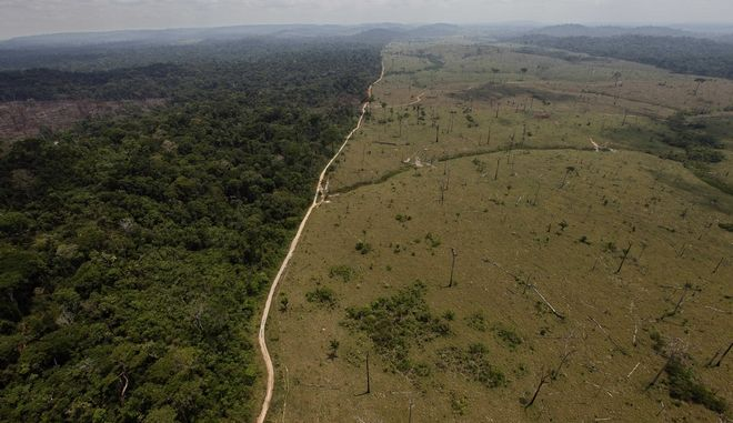 Η αποψίλωση του τροπικού δάσους του Αμαζονίου στη Βραζιλία αυξήθηκε ραγδαία, κατά 67% το πρώτο επτάμηνο της χρονιάς