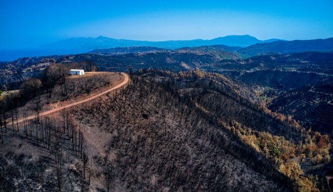 Πανοραμική εικόνα από την καταστροφή στη Βόρεια Εύβοια