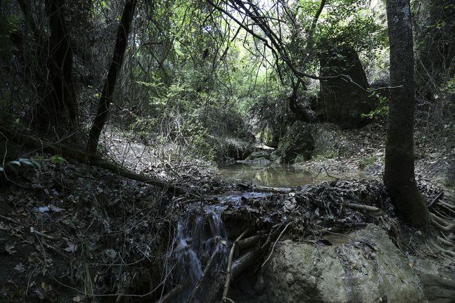 Ο ποταμός Κηφισός